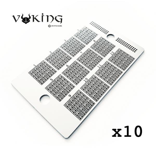 Viking Hoard Bundle x10 Crypto Hoard