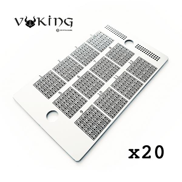 Viking Hoard Bundle x20 Crypto Hoard