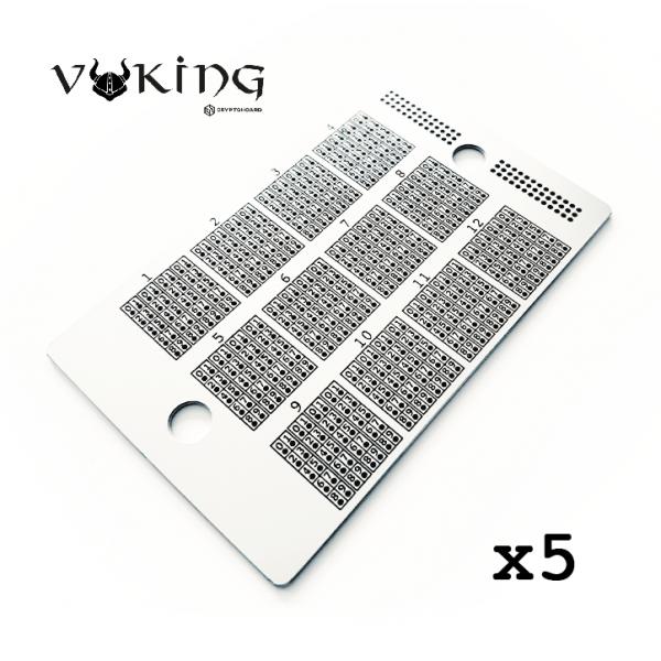 Viking Hoard Bundle x5 Crypto Hoard